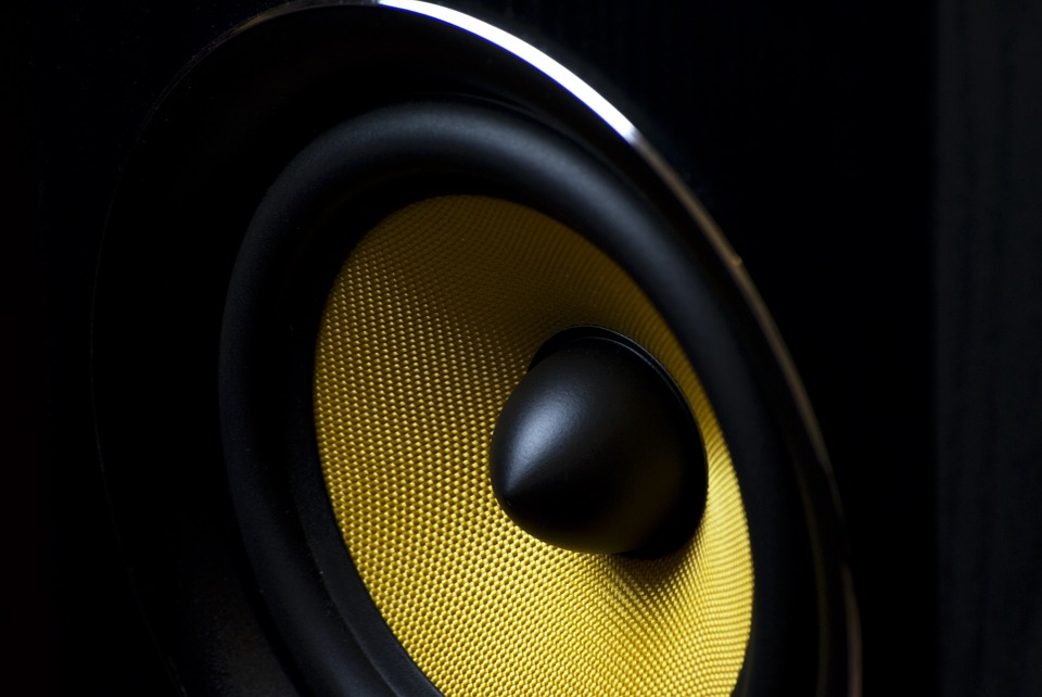 Top 5 Best 10 Inch Subwoofers